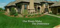 Sod for sale and sod installation
