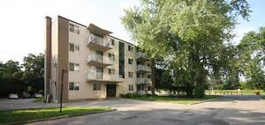 Perfect Western U Locale! Bright-Big-Renovated Suites. Rent Now! London Ontario image 5