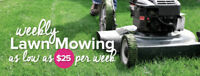 █★█TOP DOG LAWN CARE as low as 25$ ( 289 700 4491) █★█