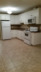 Beautiful 3 Bedroom 2 Story Apartment for Rent - Railway Ave. Stratford Kitchener Area image 3