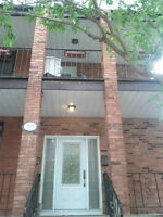 Glebe, Rare, 2 bedroom for rent, it feels like a bungalow!