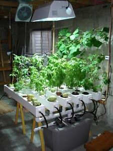 Indoor Garden Supplies, Hydroponics, Plant Nutrients, and More!