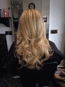 Free blowdry head massage and treatment ! Paddington Eastern Suburbs Preview