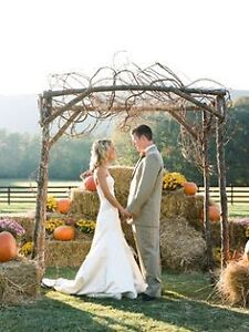 Beautiful golden straw bales for yr wedding decor special events