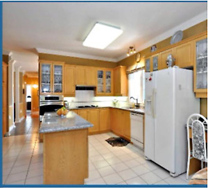 Full kitchen  - cabinets, granite counters, sink faucet, cooktop