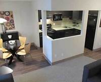 1 Bedroom Apt available for sublet