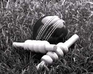 Cricket players wanted to play on turf pitches. Sydney City Inner Sydney Preview