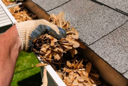Gutter cleaning and handyman