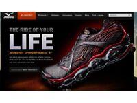 Build Professional Ecommerce Website Online Store