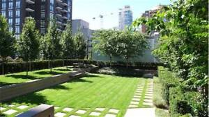 BEAUTIFUL YALETOWN 2 BED 2 BATHROOM Available Dec 1st