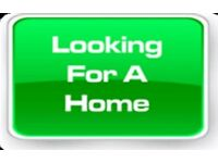 *****WANTED 2 BED HOUSE. BILSTON COSELEY WOODCROSS OR SURROUNDING AREAS ******