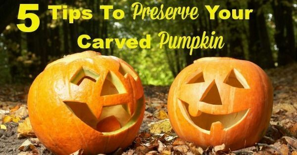 5 Tips To Preserve Your Carved Pumpkin