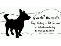 @work?#wewalk! Dog Walking & Pet Services:: Parrot Boarding G31