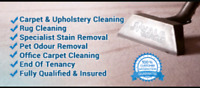 Full house carpet cleaning today only $ 179
