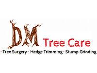 DM Tree Care