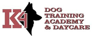 BEGINNER OBEDIENCE CLASSES- ONLY 2 SPOTS LEFT