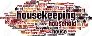 OFFICE CLEANING Kingston Kingston Area image 1