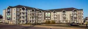 2 & 3 bdrm Suites, See it TODAY, move in TOMORROW, ALL INCLUDED
