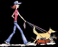 Dog Walker/ In Home Animal Care/ Groomer Available