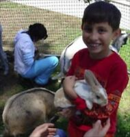 Petting zoo / mobile animal zoo / photo booth!  Even youth DJ!