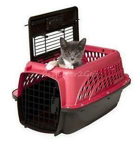 Image Result For Can My Spayed