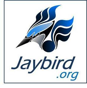 Jaybird.org | Cool 1 Word Brandable Domain Name!