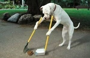 LAST DAY TO BOOK - YARD CLEANING - DOG WASTE REMOVAL