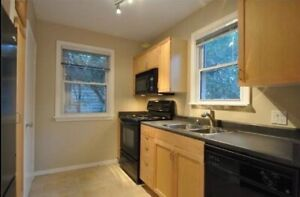 Immaculate two bedroom in Belleville for rent-Aug 1