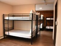 Explore the dorm rooms and suites In Canmore   Canmore Hotel Hos