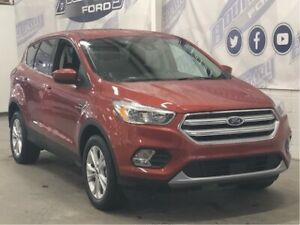 2019 Ford Escape SE w/ Safe & Smart Package,