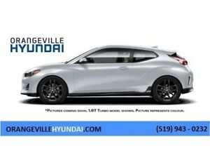 2019 Hyundai Veloster Turbo Manual - November Special