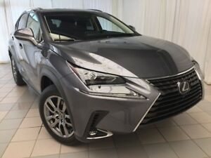 2019 Lexus NX 300 Premium Package