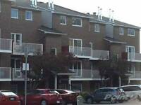 2 bedroom 2 bathroom condo for rent in Ottawa South-