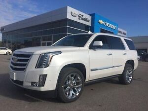 2019 Cadillac Escalade Premium Luxury   Navi   DVD   Sunroof   3
