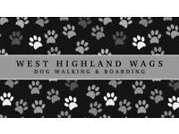 West Highland Wags - Dog Walking and Boarding - Milngavie, Bearsden, Strathblane