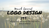 Logo design package HALF PRICE