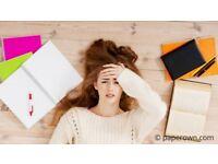 Essay,Assignment,Coursework,Dissertation,Expert Help