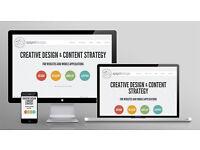 Website Design/Blog only for £90