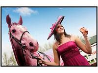 Perth Races VIP Ladies Day Ticket - 18/05/2017