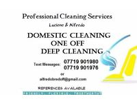Domestic Cleaning Services in Bristol