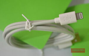 iPHONE, iPOD, iPAD GENUINE USB DATA CABLE CHARGER, SYNC WIRE Regina Regina Area image 2