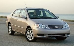 2004 Toyota Corolla (car of your dreams)