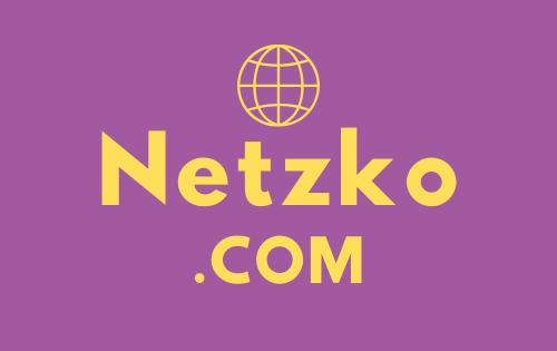 Netzko .com / NR Domain Auction / Wireless Network Provider, Business / Namesilo - $5.00