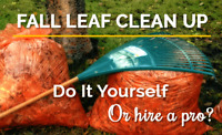 Leaf Cleanup + More!