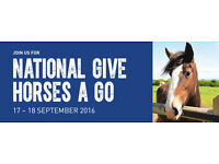 National Give Horses A Go Day