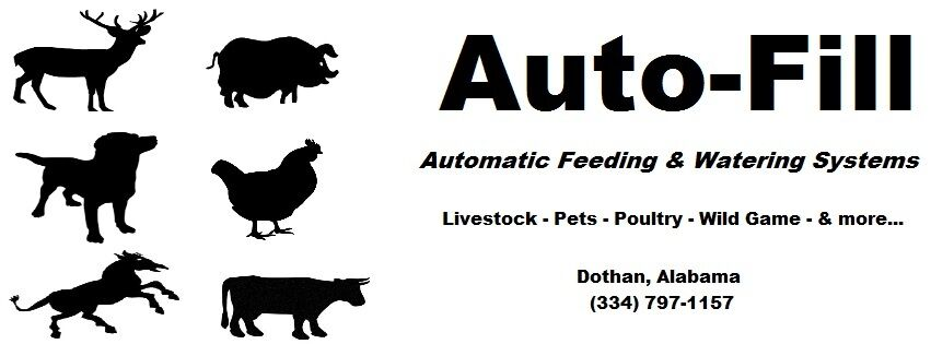 Auto-Fill Automatic Feeding & Water
