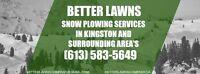 SNOWPLOWING 613-583-5649