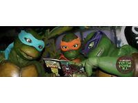 Teenage mutant ninja turtles for hire