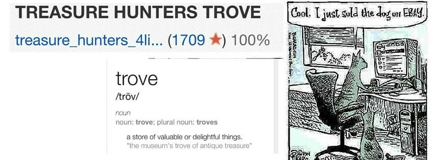 TREASURE HUNTERS TROVE