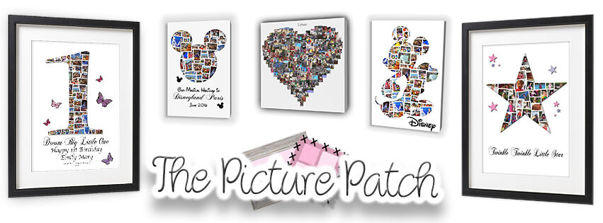 picturepatch16